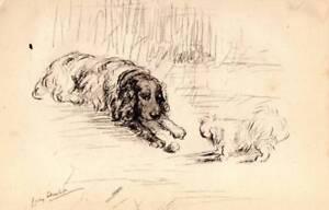 Lucy Dawson 'Mac' Original Pen & Pencil Vintage Dog Print Springer Spaniel & Pek