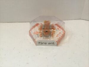 HEXBUG Fire Ant Remote Controlled Micro Robotic Creatures Orange - see details