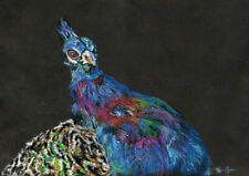 10x8 print Peacock 1 bird oil pastel painting animal art Andy Currie-Scarr