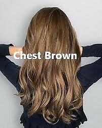 Hair Dye Colour Natural Shampoo Covering White Gray Hair Free Ammonia 500ml