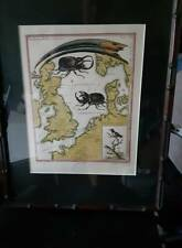 """George Edwards - Map of England and Europe The """"Beetle"""" Map"""