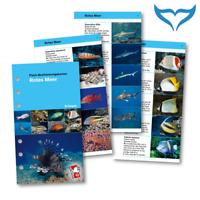 iQ Logbuch Fish Card Fisch Bestimmungskarten Red Sea Rotes Meer DE M sub NEU