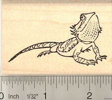 Bearded Dragon Rubber Stamp H10417 WM reptile lizard