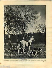 1930 Book Plate Print Foxhound Germany Fox Terrier Drungewick Peggy Solus Gold