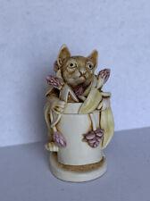 Harmony Kingdom Algenon Cat In a Flower Pot Made in England