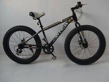 Urban Mountain Fat Tire  bike