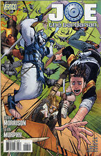 2010 JOE THE BARBARIAN #4 & #5 ( VERTIGO ) DC COMICS NM