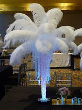 1000 PCS Beautiful OSTRICH FEATHERS 10-12inches/25-30cm wedding (white )