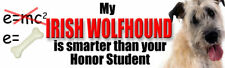 Irish Wolfhound Smarter Than Your Honor Student Sticker