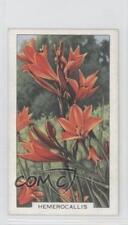 1938 Gallaher Garden Flowers Tobacco Base #18 Hemerocallis Non-Sports Card 1i3