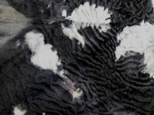 sheepskin leather hide Spotted Black & Grey Curly Ripple Hair Karakul sheep
