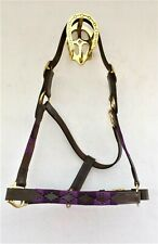 PURPLE QUALITY POLO HEAD COLLARS WITH BRASS FITTINGS IN COB/FULL/X-FULL