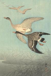 White Fronted Geese in Flight by Watanabe Shozaburo Japanese Woodblock