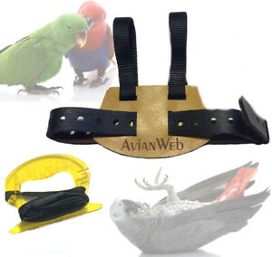 Avianweb EZ Bird Harness with 8 Foot Leash  - Made in the USA