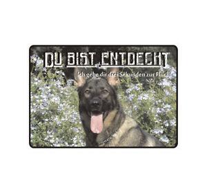 """Schild Hinweisschild Hinweis """"Du bist endeckt"""" Hund Dog Wachhund Vorsicht Bissig"""