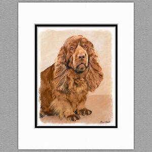 Sussex Spaniel Dog Original Art Print 8x10 Matted to 11x14