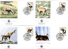 4 Briefe Albanien FDC 1990 WWF Gemsen Nr: 2423 - 2426 o Ersttag C_037
