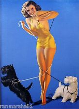 1940s Pin-Up Scottish Terrier Dogs Dog Picture Poster Print Art Vintage Pin Up