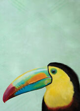 TROPICAL TOUCAN BIRD * QUALITY CANVAS ART PRINT