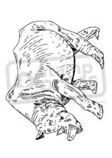 A7 'Walking Rhino' Unmounted Rubber Stamp (SP00006858)