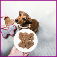 Work From Home|Fully Stocked Dropship DOGGY TREATS Website Business|FREE DOMAIN