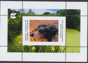FROGS VERY INTERESTING - 4 SHEETS private issue LIMITED EDITION!!!