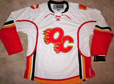 QUAD CITY FLAMES (IA) YOUTH MINOR LEAGUE HOCKEY JERSEY AHL NEW YOUTH S  fc8509aa282