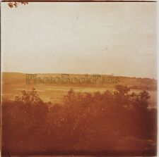 Forêt de Fontainebleau Photo Stereo Verre Positive Vintage 1907