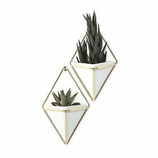 Umbra Trigg Wall Vessel Small Set of 2   $43