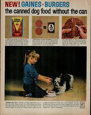 1963 Gaines Dog Food Shitzu Dog Being Fed by Girl Vintage Print Ad 1505