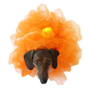 Midlee Loofah Dog Halloween Costume…