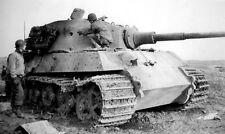 WWII Photo German Tiger II Knocked Out  World War Two Germany  WW2 / 4036