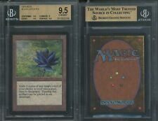 MTG Magic Beta Black Lotus BGS 9.5 B GEM MINT (TCC)