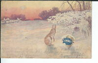 AY-172 - Snowdrift Shortening, 1901-1907 Undidvided Back Advertising Postcard
