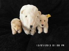 Rare Early 50s-60s Steiff Polar the Titanic bear in great condition with cubs.