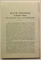 Orig. Prospekt Asyl St. Gilgenberg um 1860 Ortskunde Geografie Geographie sf