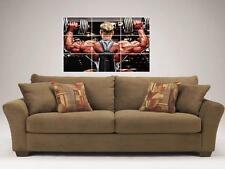 "Dennis wolf mosaïque 35""X25"" pouces wall poster bodybuilding pumping iron"