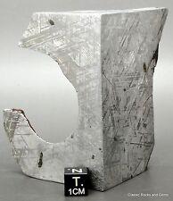 Top Gibeon Iron Meteorite End Piece Widmanstätten Gibeon Eisen Meteorit 396 gr