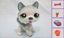 Littlest Pet Shop Rare Puppy Dog Husky 1563 Free Accessory Authentic