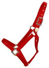 Hamilton 1-Inch Nylon Horse Halter, Small, 500 to 800-Pound, Red
