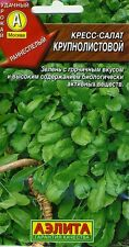 """Watercress """"large leaf"""" Russian High Quality seeds"""