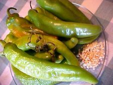 "HATCH VALLEY, NEW MEXICO USA  LEGENDARY  ""HOT"" GREEN CHILI PEPPER SEEDS the BEST"