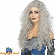 Banshee Grey Long Messy Witch Haloween Wig Adult Womens Fancy Dress Costume