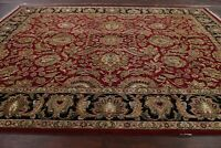Burgundy/Black All-over Floral Agra Oriental Area Rug Wool Hand-Knotted 9x12