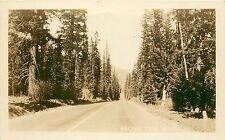 Real Photo Postcard Posted 1944 Naches Pass Highway Wa Cascade Range