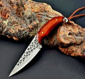 Handmade Drop Point Knife Hunting Tactical Combat Damascus Steel Wood Handle Cut