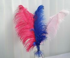 51-60cm Extra Large Ostrich Feathers - Fuchsia Pink, Royal Blue - Clearance Sale