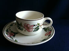Villeroy & Boch Palermo coffee cup & saucer (saucer has tiny chip)