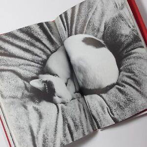 "Nobuyoshi Araki ""CHIRO MY LOVE"" Cat Yoko Photo Essay Original Edition 1991"