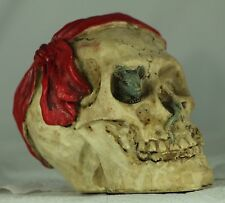 Pirate Skull Money Box a Useful Weird & Unusual Present & Gift - YAR ME HEARTIES